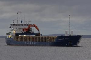 Photo of HAGLAND BORG ship
