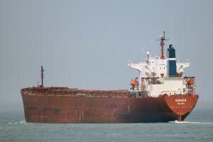 Photo of SEAGUARDIAN ship