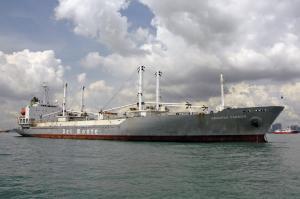 Photo of ARACENA CARRIER ship