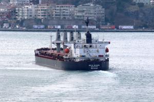 Photo of BRAVE RICHARD ship