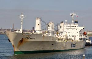 Photo of WILD LOTUS ship