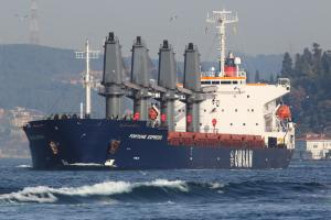 Photo of FORTUNE EXPRESS ship