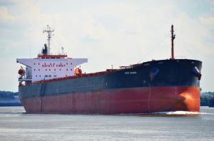 Photo of GENCO SURPRISE ship