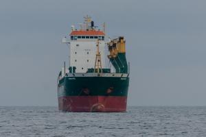 Photo of OLEG TAVOLZHANSKIY ship