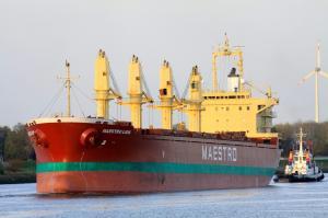 Photo of MAESTRO LION ship
