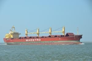 Photo of MAESTRO TIGER ship