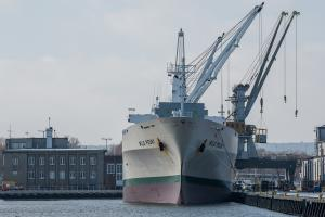 vessel photo WILD PEONY