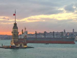 Photo of ROSINA TOPIC ship