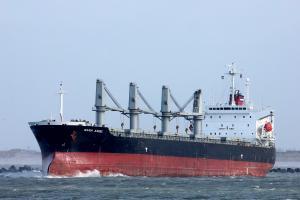 Photo of IKARIA ANGEL ship
