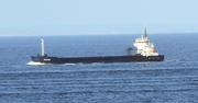 FRI OCEAN (MMSI: 309467000)