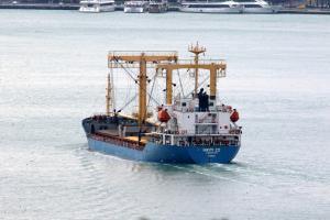 Photo of NIKITI II ship