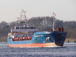 Photo of TRANSDISTINTO ship