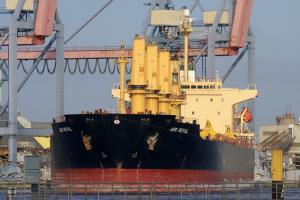 Photo of ARK ROYAL ship