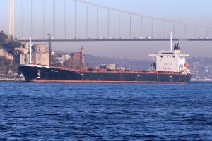 Photo of MAGANARI ship