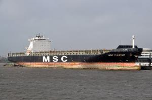 Photo of MSC FLAMINIA ship