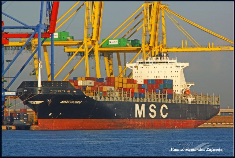 MSC ILONA photo