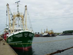 Photo of BRA7 JADE ship