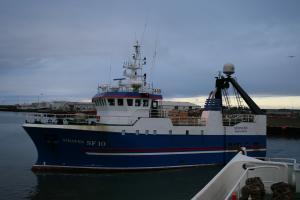 Photo of STEINUNN ship