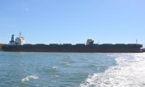 Photo of PASCHALIS D ship