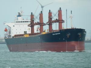 Photo of BULK BEOTHUK ship