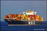 MSC MICHAELA (MMSI: 353666000)
