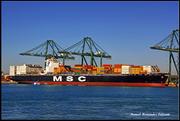 MSC LORETTA (MMSI: 352140000)