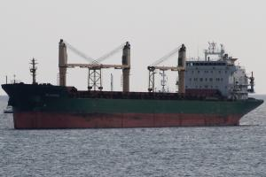Photo of BLUEWING ship