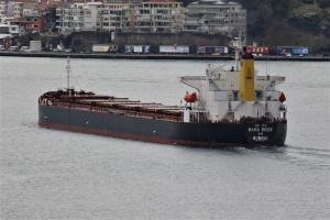 Photo of MAHA ROOS ship