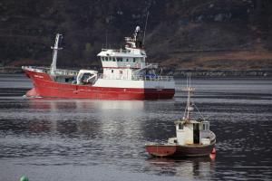 Photo of GERDA SAELE ship