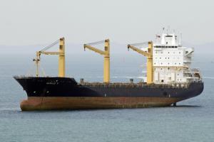Photo of SPIL NITA ship