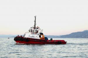 Photo of TAMARA 1 ship