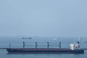 Photo of LAMINIA ship