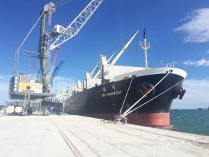 Photo of TAI HARVEST ship