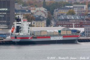 Photo of VIRGINIABORG ship