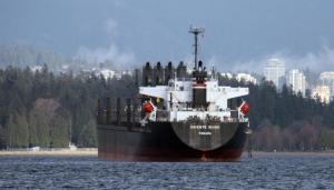Photo of ORIENTE SHINE ship