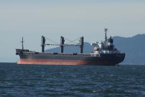 Photo of TAN BINH 134 ship