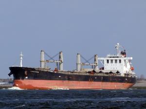 Photo of ZHONG LIANG DONG NAN ship