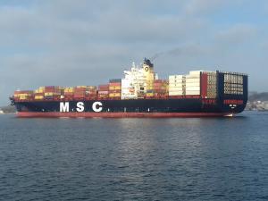 Photo of MSC VIDHI ship