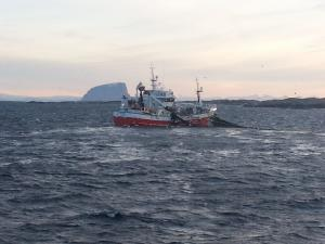 Photo of BUEFJORD ship