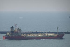 Photo of DL CAMELLIA ship