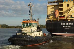 TUG 21 (IMO 9247338) Photo