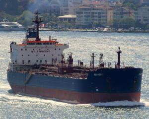 Photo of SEAMERIT ship