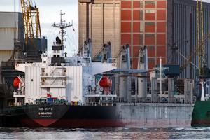 Photo of BOSPHORUS ASIA ship