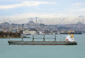 Photo of LISSA TOPIC ship