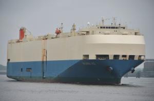 Photo of SPLENDID ACE ship
