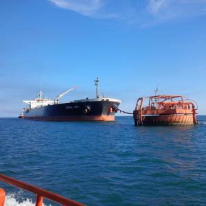 Photo of CORAL SEA ship