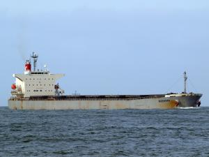 Photo of PICTOR ship