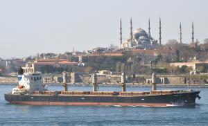 Photo of ELPIDA GR ship