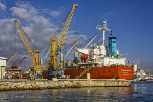 Photo of V. SANDERLING ship
