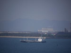 Photo of SYUNYOMARU ship